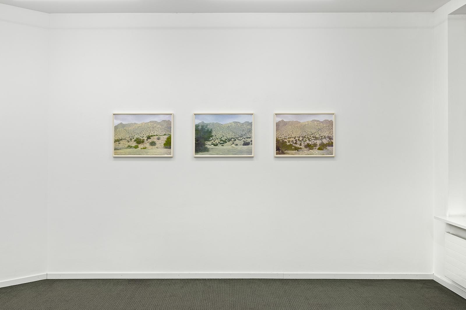 Ausstellungsansicht Cécile Wick