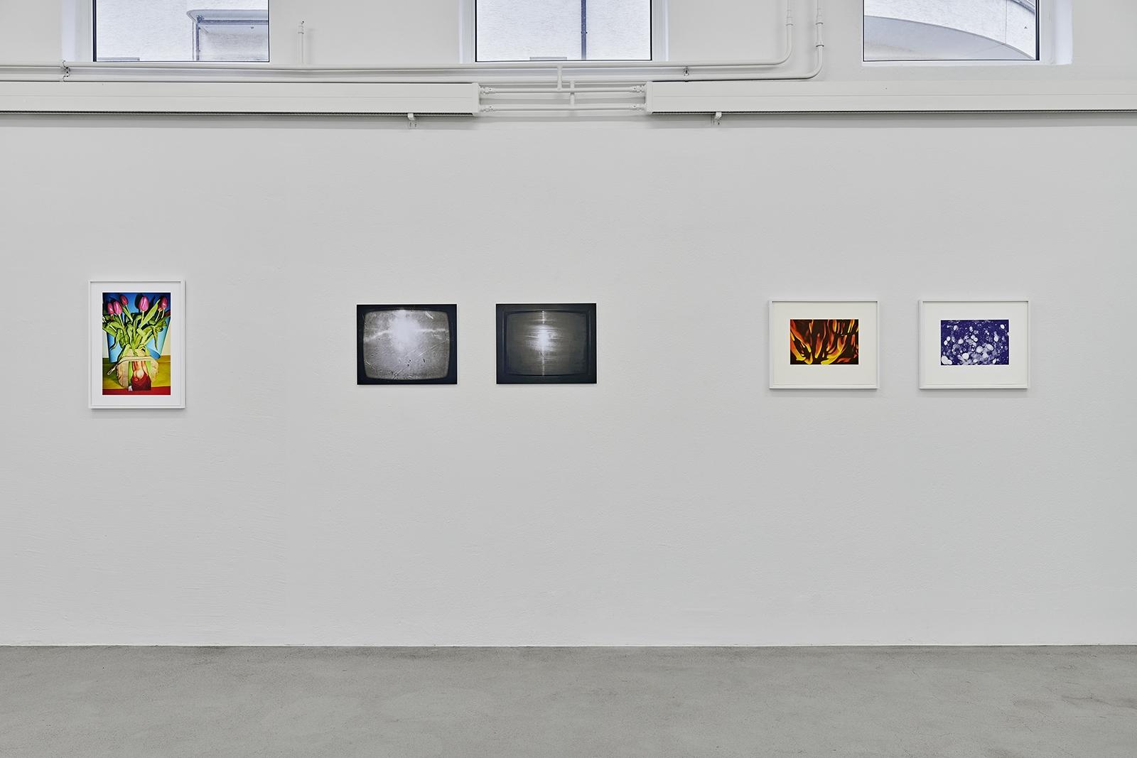 Ausstellungsansicht Walter Pfeiffer, Daniela Comani, Andreas Züst