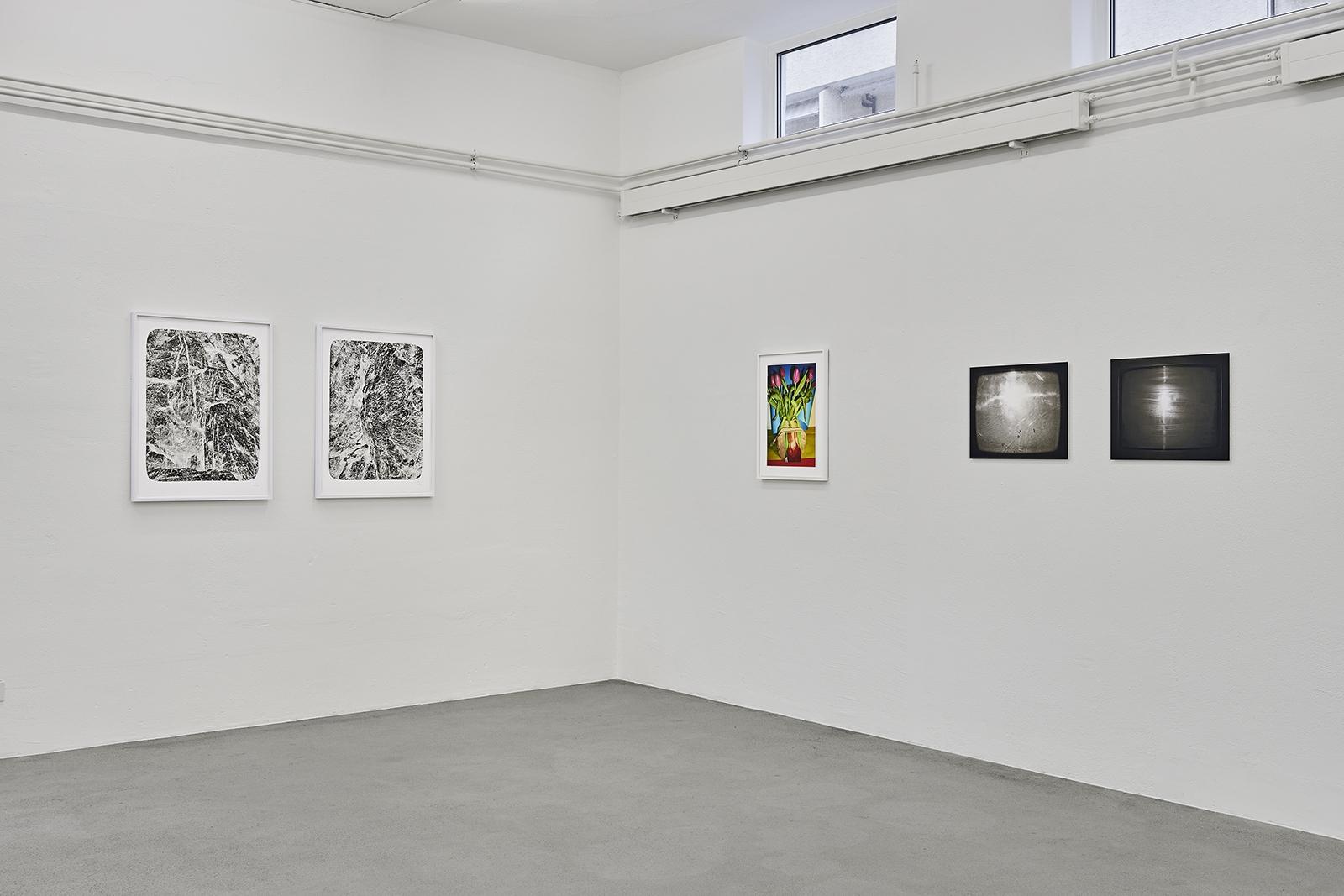 Ausstellungsansicht Guido Baselgia, Walter Pfeiffer, Daniela Comani